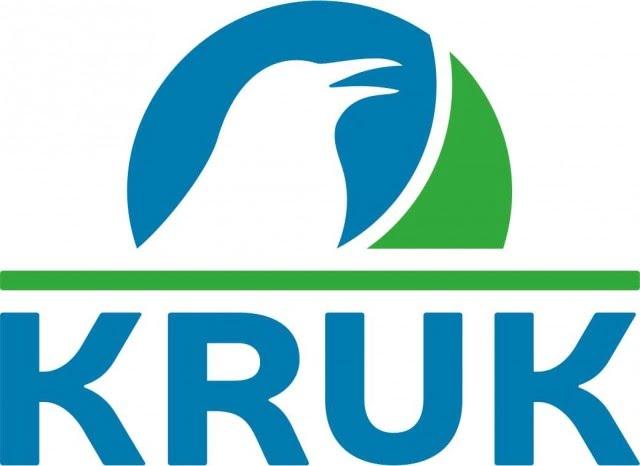 De ce sa urmezi ghidurile pentru gestionarea bugetului de pe site-ul Kruk Romania