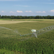 Cum alegeți sistemul de irigații potrivit pentru culturile agricole?